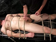 Tied up guy gets his dick pleasured by his horny boyfriend